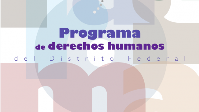 programa2008.png